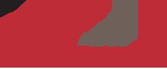 IDS_Logo